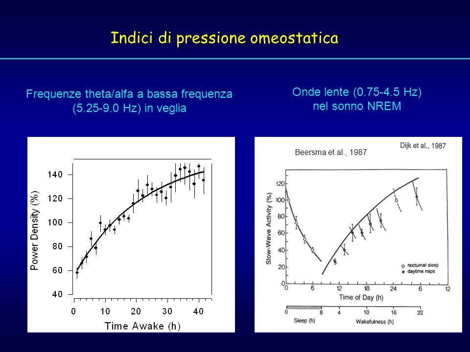 Indici di pressione omeostatica Onde lente (0.75-4.5 Hz) nel sonno NREM Beersma et al., 1987 Frequenze theta/alfa a bassa frequenza (5.25-9.0 Hz) in v