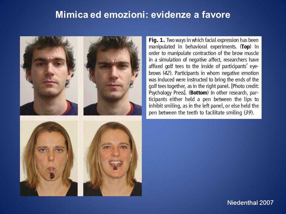 Zigomatico maggiore Corrugatore delle sopracciglia Dimberg et al.