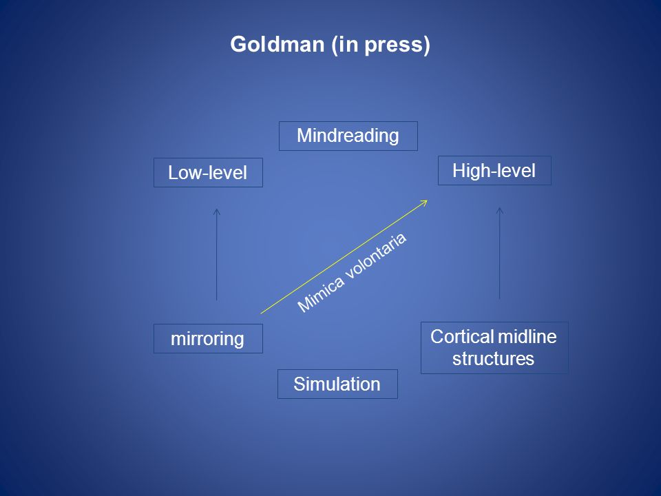 Goldman (in press) Low-level Simulation High-level Mindreading mirroring Cortical midline structures Mimica volontaria