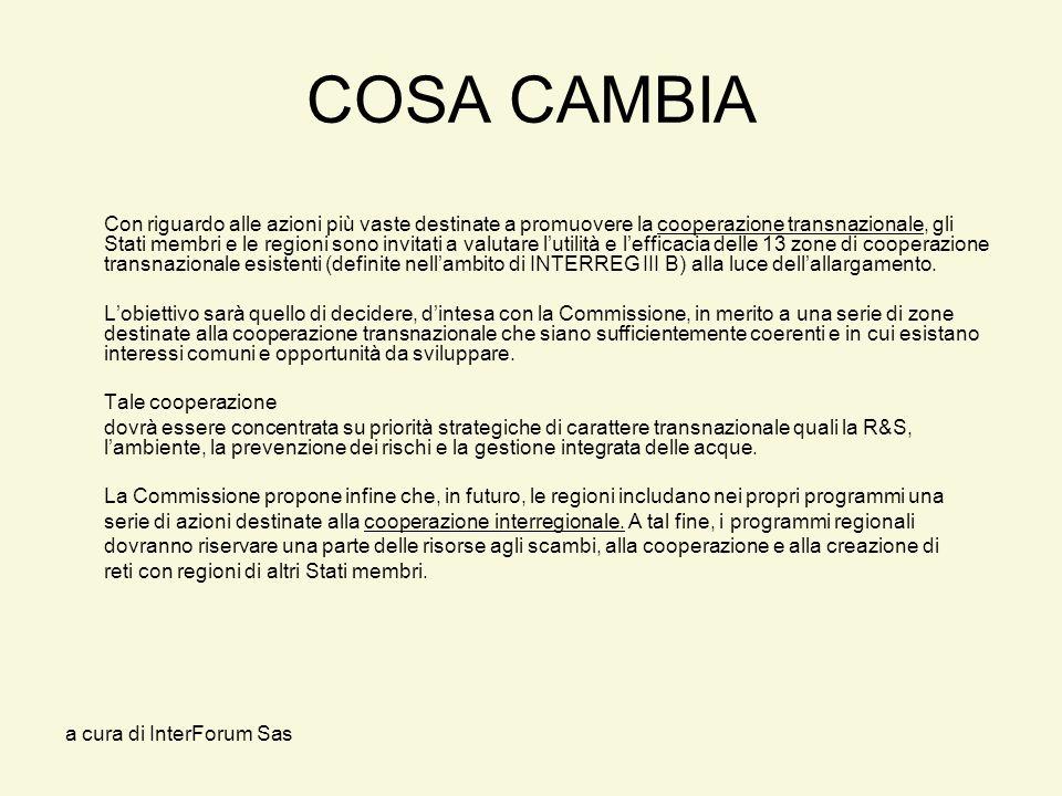 a cura di InterForum Sas COSA CAMBIA Con riguardo alle azioni più vaste destinate a promuovere la cooperazione transnazionale, gli Stati membri e le regioni sono invitati a valutare lutilità e lefficacia delle 13 zone di cooperazione transnazionale esistenti (definite nellambito di INTERREG III B) alla luce dellallargamento.