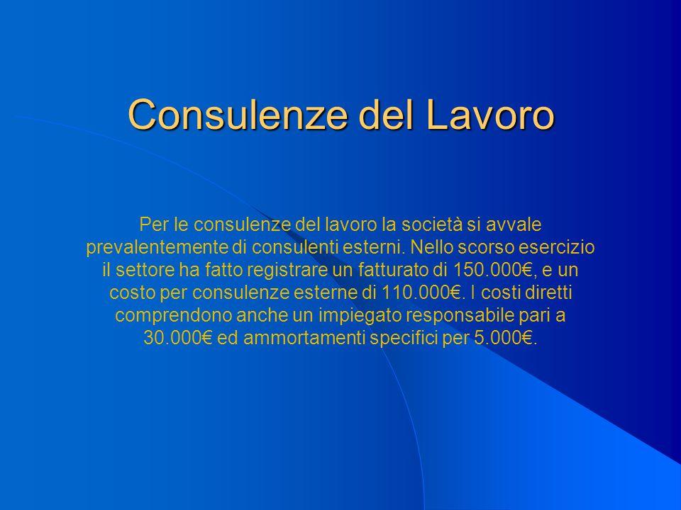 Consulenze del Lavoro Per le consulenze del lavoro la società si avvale prevalentemente di consulenti esterni. Nello scorso esercizio il settore ha fa