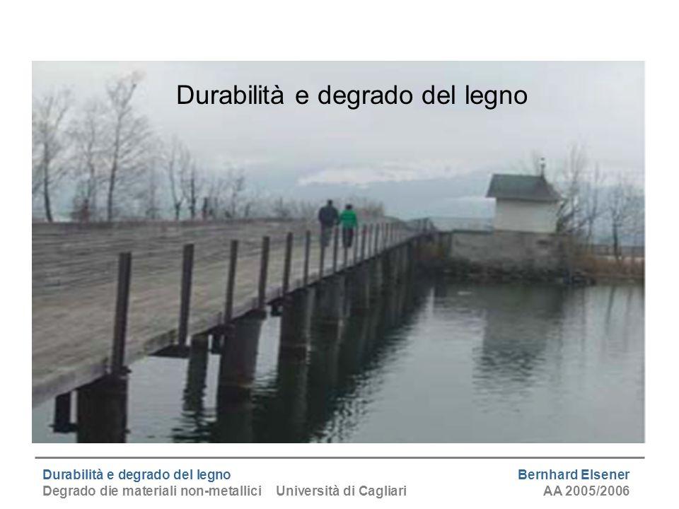 Durabilità e degrado del legno Bernhard Elsener Degrado die materiali non-metallici Università di CagliariAA 2005/2006 2Proprietà del legno...se utilizzato bene