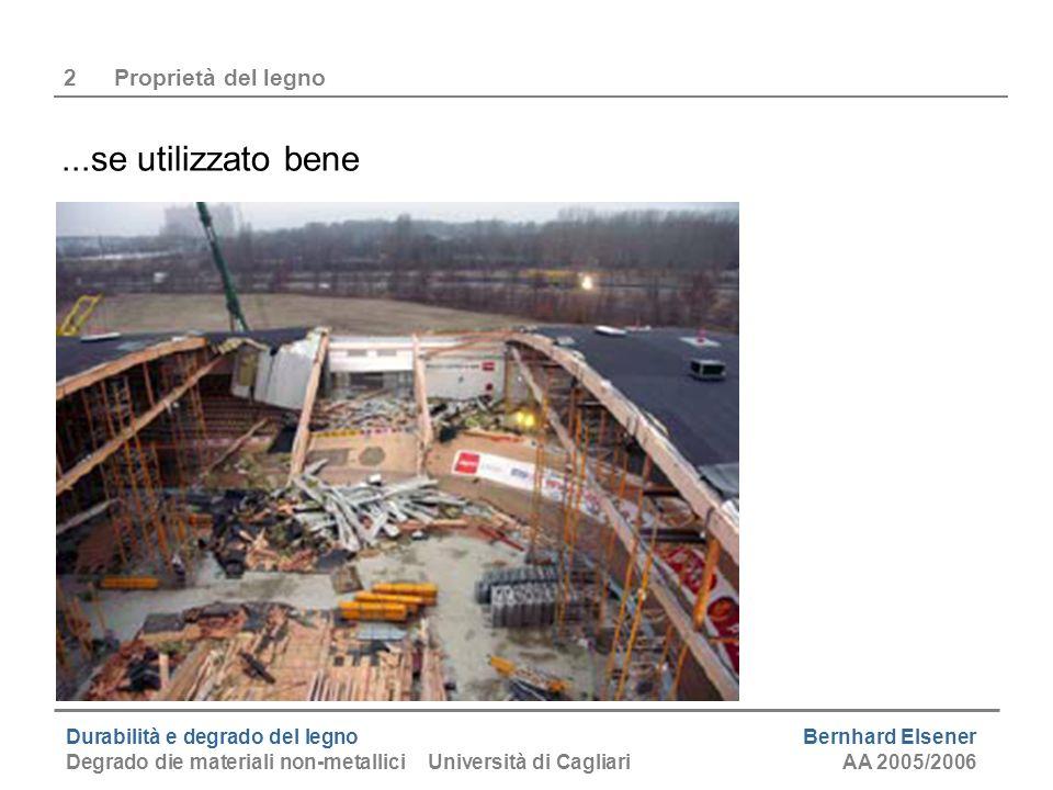 Durabilità e degrado del legno Bernhard Elsener Degrado die materiali non-metallici Università di CagliariAA 2005/2006 2Proprietà del legno...se utili