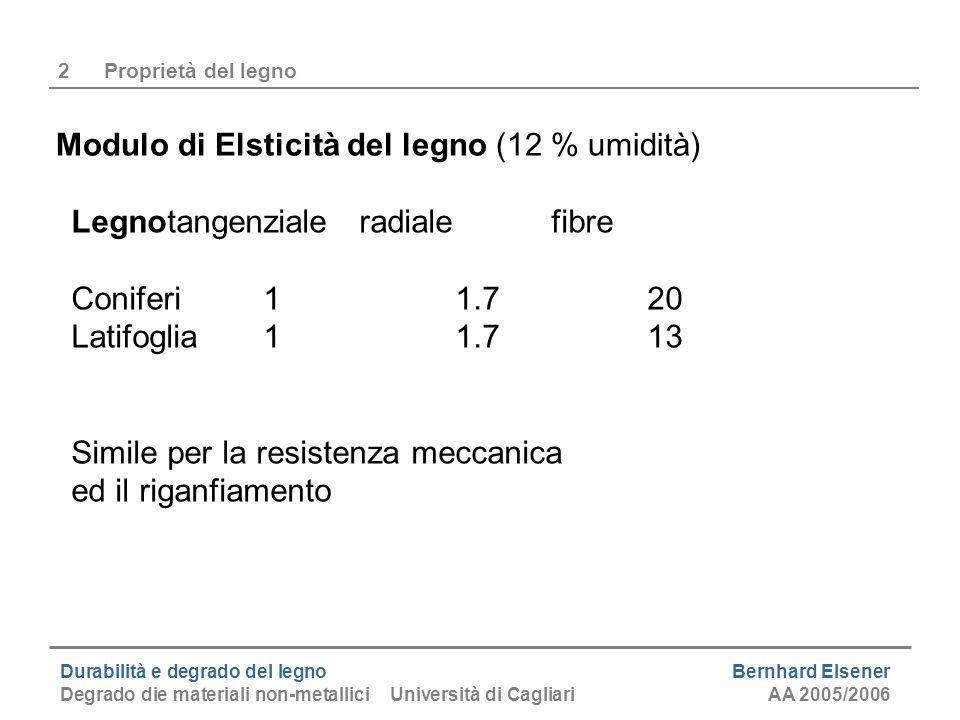 Durabilità e degrado del legno Bernhard Elsener Degrado die materiali non-metallici Università di CagliariAA 2005/2006 2Proprietà del legno Modulo di