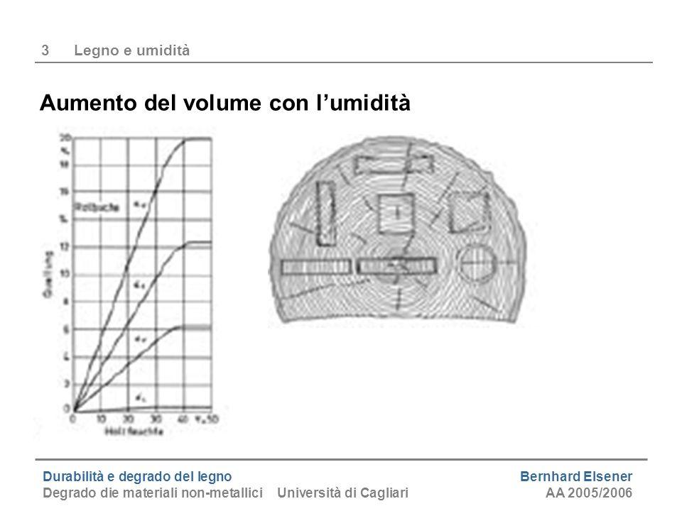 Durabilità e degrado del legno Bernhard Elsener Degrado die materiali non-metallici Università di CagliariAA 2005/2006 3Legno e umidità Aumento del vo