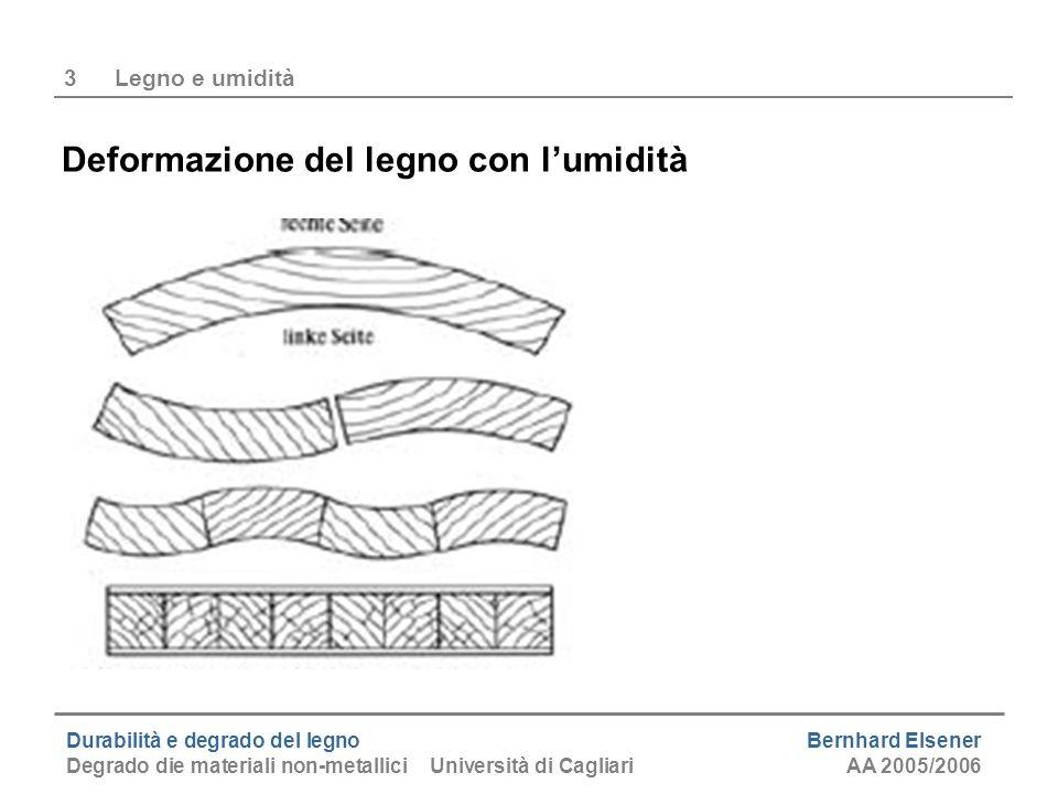 Durabilità e degrado del legno Bernhard Elsener Degrado die materiali non-metallici Università di CagliariAA 2005/2006 3Legno e umidità Deformazione d