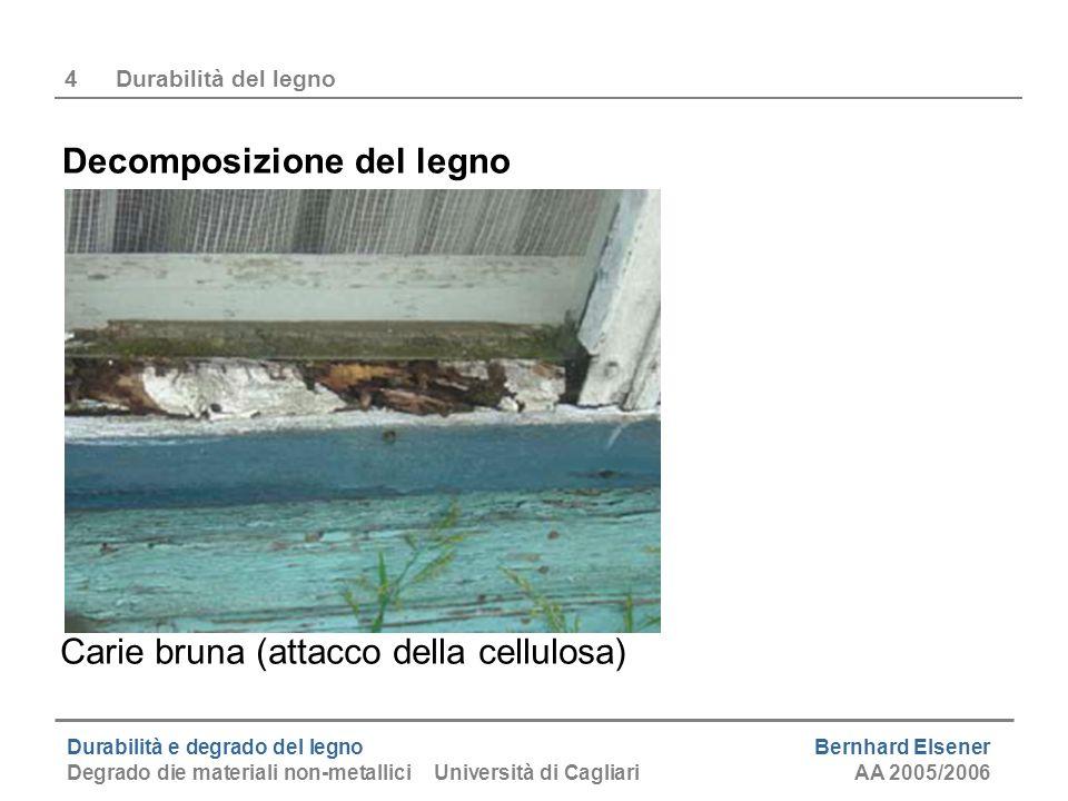 Durabilità e degrado del legno Bernhard Elsener Degrado die materiali non-metallici Università di CagliariAA 2005/2006 4Durabilità del legno Decomposi