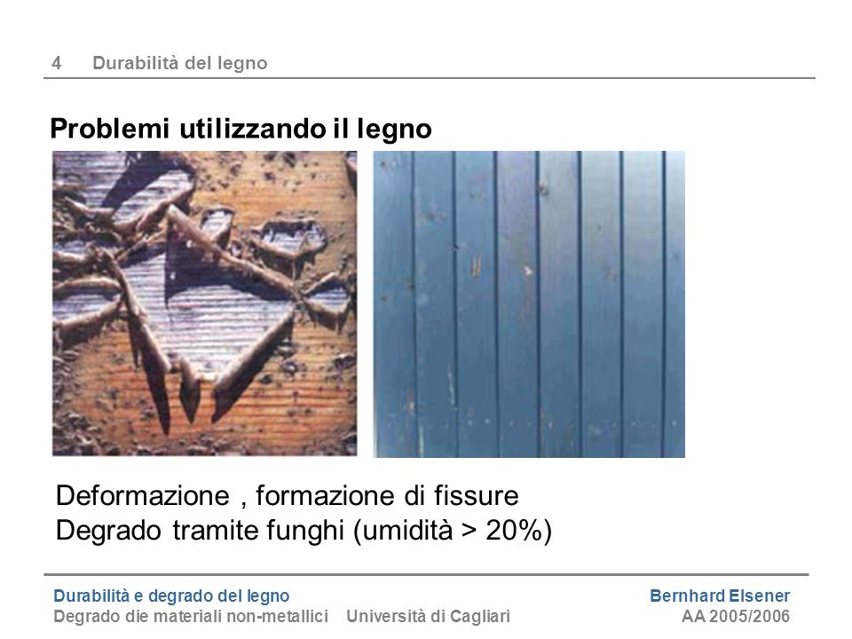Durabilità e degrado del legno Bernhard Elsener Degrado die materiali non-metallici Università di CagliariAA 2005/2006 4Durabilità del legno Problemi