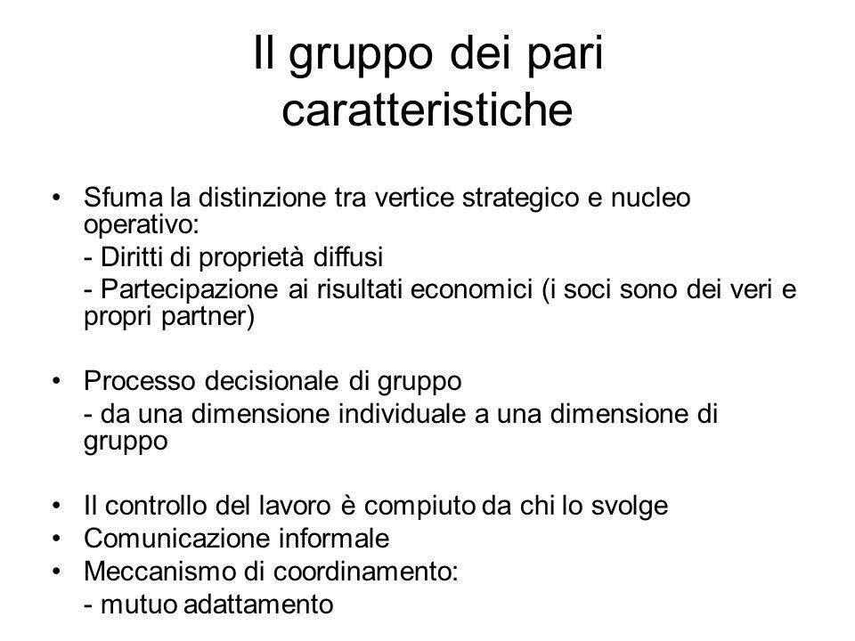 Il gruppo dei pari caratteristiche Sfuma la distinzione tra vertice strategico e nucleo operativo: - Diritti di proprietà diffusi - Partecipazione ai