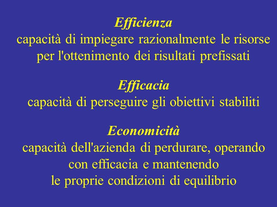 Efficienza capacità di impiegare razionalmente le risorse per l'ottenimento dei risultati prefissati Efficacia capacità di perseguire gli obiettivi st