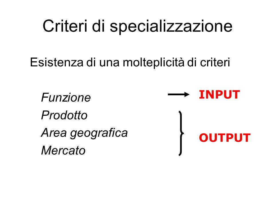 Criteri di specializzazione Esistenza di una molteplicità di criteri Funzione Prodotto Area geografica Mercato INPUT OUTPUT