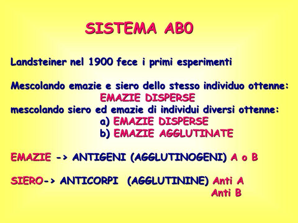 A A/O B B/O A B ABO A/OB/O A/BO/O O AB A/B A A/O B B/O A A/A B B/B AB A/B AB A/B B B/O AB A/B AB A/B A A/O A A/A ABO = FENOTIPO ABO = GENOTIPO