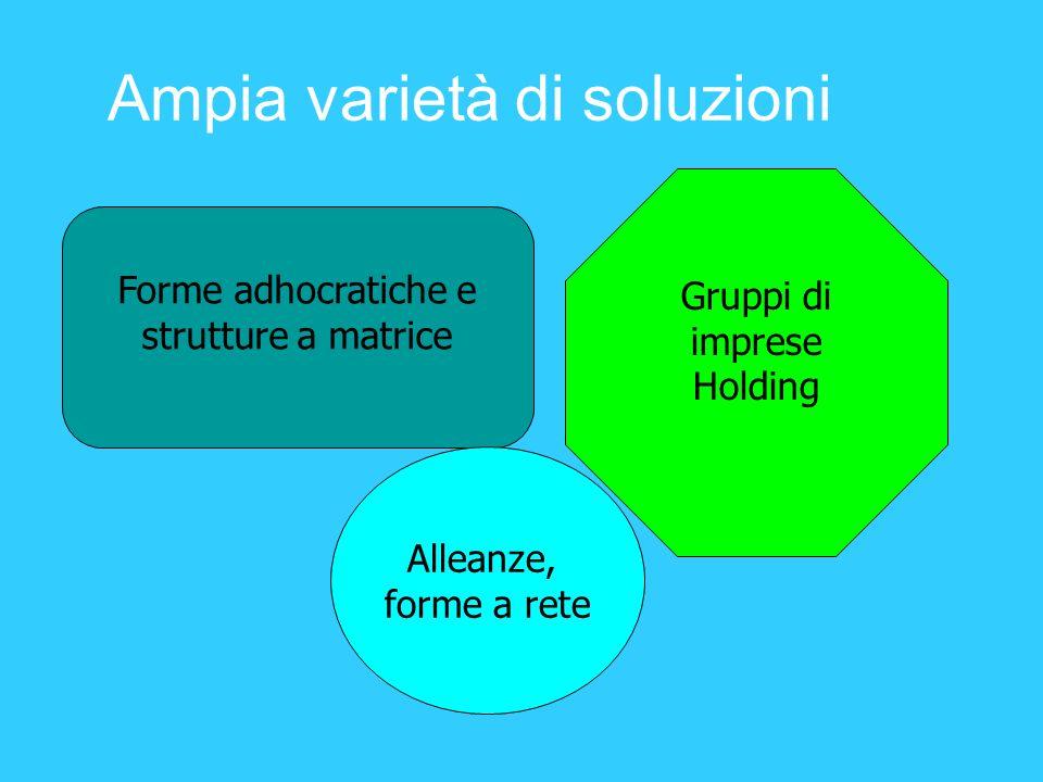 Ampia varietà di soluzioni Forme adhocratiche e strutture a matrice Gruppi di imprese Holding Alleanze, forme a rete