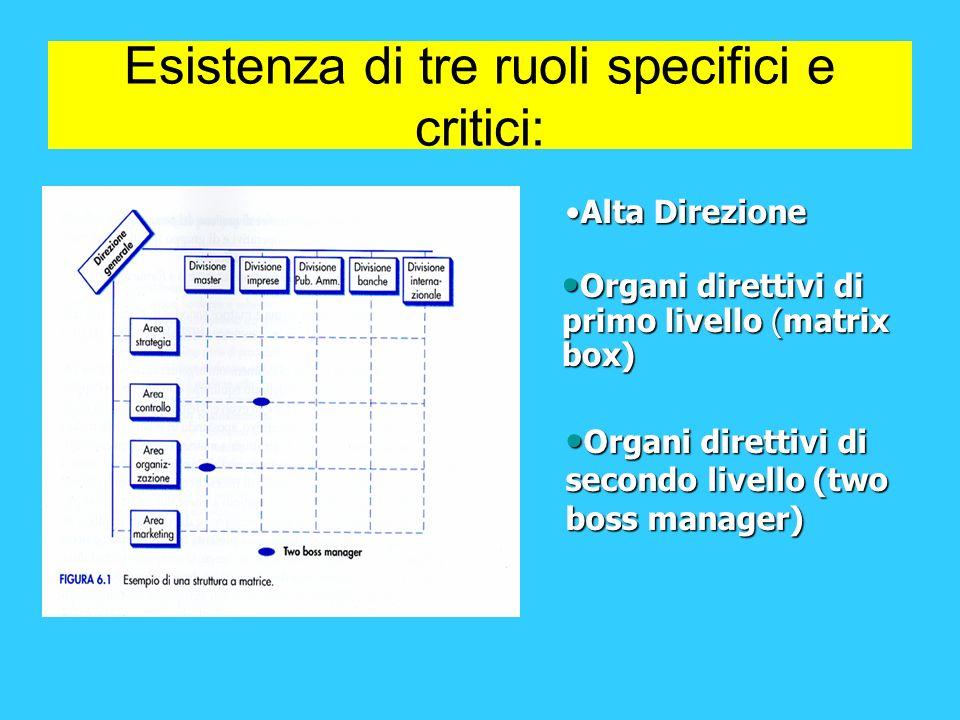 Esistenza di tre ruoli specifici e critici: Alta DirezioneAlta Direzione Organi direttivi di primo livello (matrix box) Organi direttivi di primo live