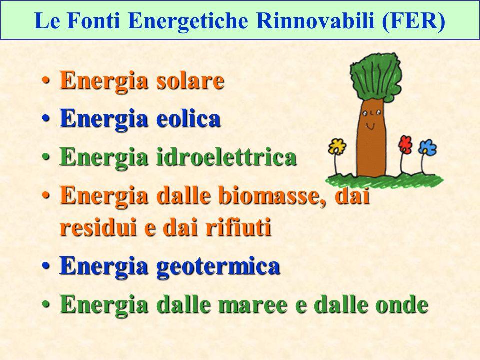 Energia solareEnergia solare Energia eolicaEnergia eolica Energia idroelettricaEnergia idroelettrica Energia dalle biomasse, dai residui e dai rifiutiEnergia dalle biomasse, dai residui e dai rifiuti Energia geotermicaEnergia geotermica Energia dalle maree e dalle ondeEnergia dalle maree e dalle onde Le Fonti Energetiche Rinnovabili (FER)