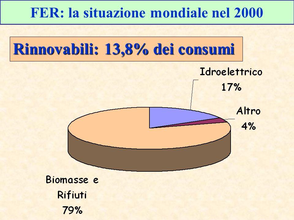 FER: la situazione mondiale nel 2000 Rinnovabili: 13,8% dei consumi