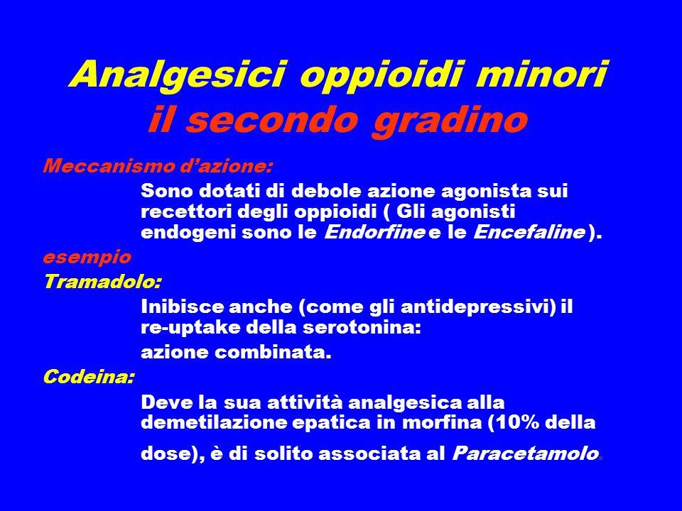 Analgesici oppioidi minori il secondo gradino Meccanismo dazione: Sono dotati di debole azione agonista sui recettori degli oppioidi ( Gli agonisti endogeni sono le Endorfine e le Encefaline ).