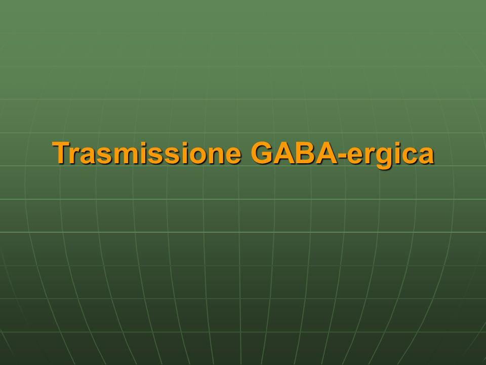 Il GABA, acido gamma-aminobutirrico, fu identificato per La prima volta nel 1950 ad opera di Robers and Frankel amminoacido amminoacido neurotrasmettitore inibitorio neurotrasmettitore inibitorio 35-40% delle sinapsi presenti a livello centrale sono GABA-ergiche 35-40% delle sinapsi presenti a livello centrale sono GABA-ergiche Ruolo nella fisopatologia di numerose amlattie mentali e non solo (ansia, epilessia) Ruolo nella fisopatologia di numerose amlattie mentali e non solo (ansia, epilessia)