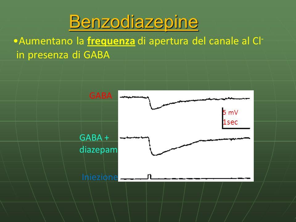 Benzodiazepine GABA GABA + diazepam Iniezione 5 mV 1sec Aumentano la frequenza di apertura del canale al Cl - in presenza di GABA