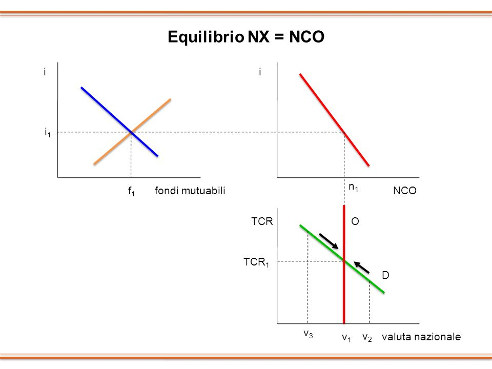Equilibrio NX = NCO ii TCR i1i1 f1f1 fondi mutuabiliNCO valuta nazionale n1n1 O TCR 1 v1v1 D v2v2 v3v3