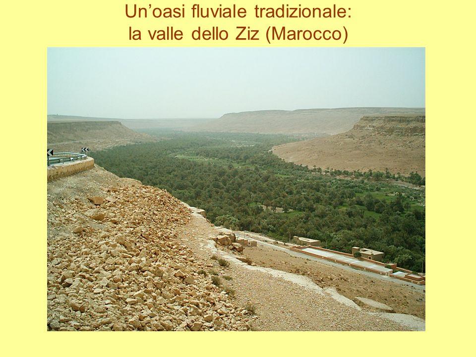 Unoasi fluviale tradizionale: la valle dello Ziz (Marocco)