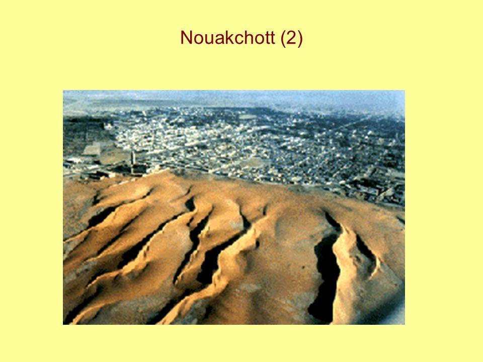 Nouakchott (2)