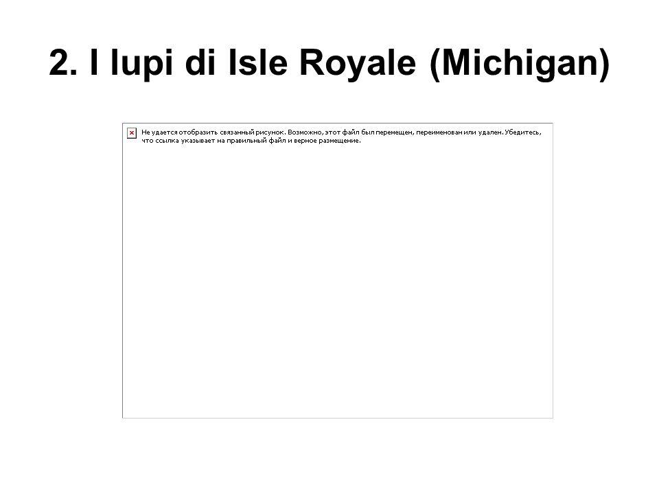 2. I lupi di Isle Royale (Michigan)