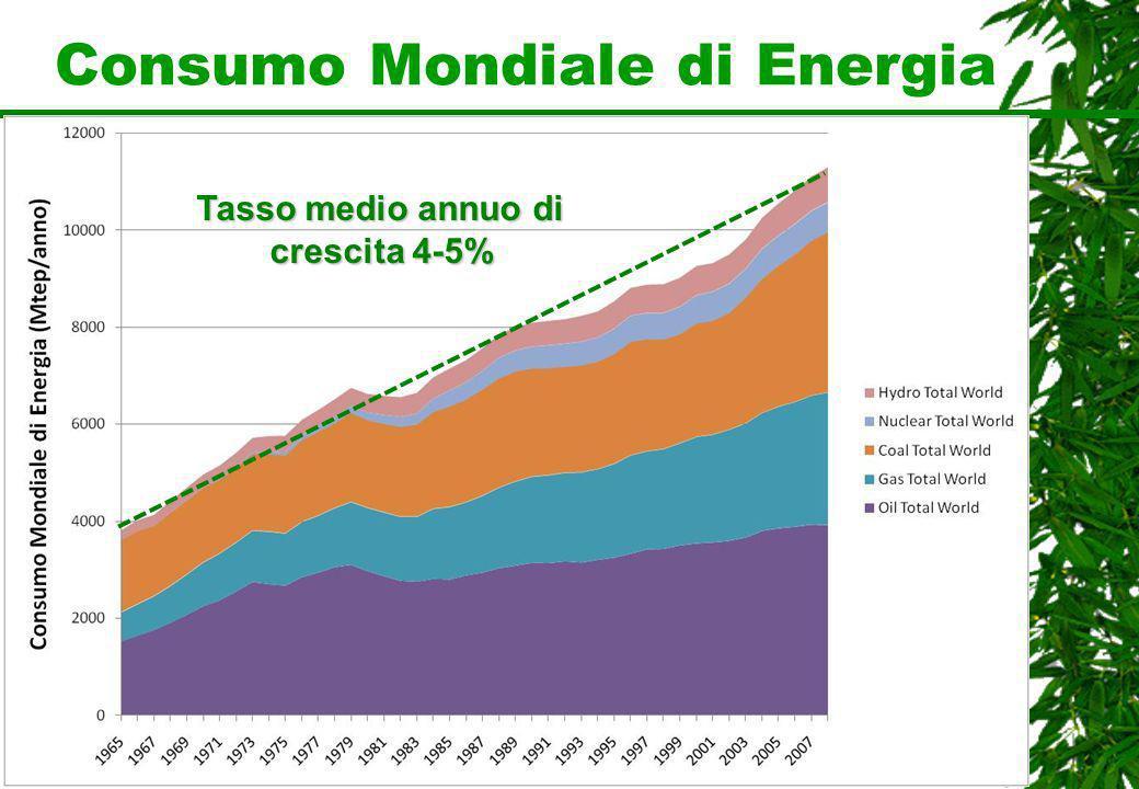 Consumo Mondiale di Energia Tasso medio annuo di crescita 4-5%
