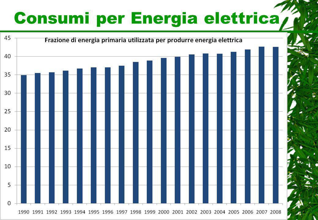 Consumi per Energia elettrica