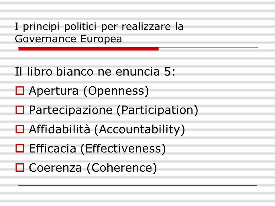 I principi politici per realizzare la Governance Europea Il libro bianco ne enuncia 5: Apertura (Openness) Partecipazione (Participation) Affidabilità