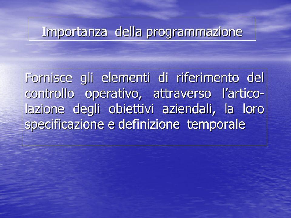Importanza della programmazione Fornisce gli elementi di riferimento del controllo operativo, attraverso lartico- lazione degli obiettivi aziendali, l