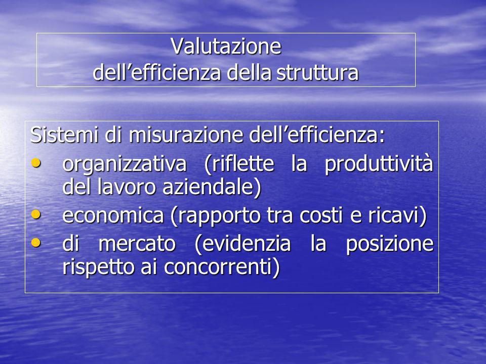 Valutazione dellefficienza della struttura Sistemi di misurazione dellefficienza: organizzativa (riflette la produttività del lavoro aziendale) organi