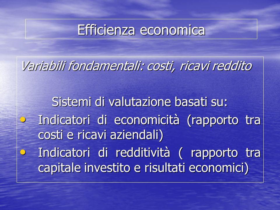 Efficienza economica Variabili fondamentali: costi, ricavi reddito Sistemi di valutazione basati su: Indicatori di economicità (rapporto tra costi e r