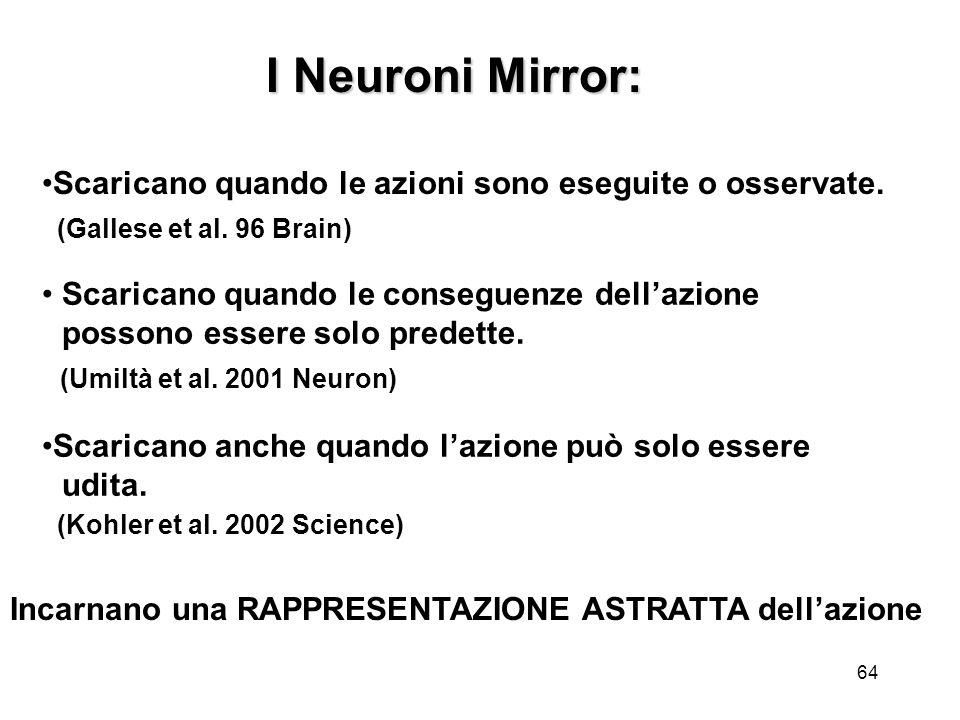 64 Scaricano quando le conseguenze dellazione possono essere solo predette. (Umiltà et al. 2001 Neuron) Incarnano una RAPPRESENTAZIONE ASTRATTA dellaz