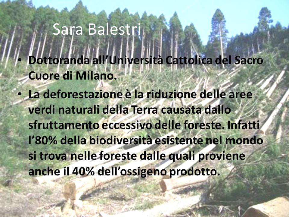 Sara Balestri Dottoranda allUniversità Cattolica del Sacro Cuore di Milano.