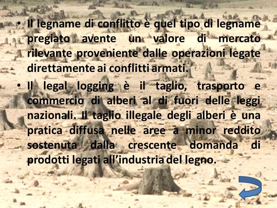 Il legname di conflitto è quel tipo di legname pregiato avente un valore di mercato rilevante proveniente dalle operazioni legate direttamente ai conf