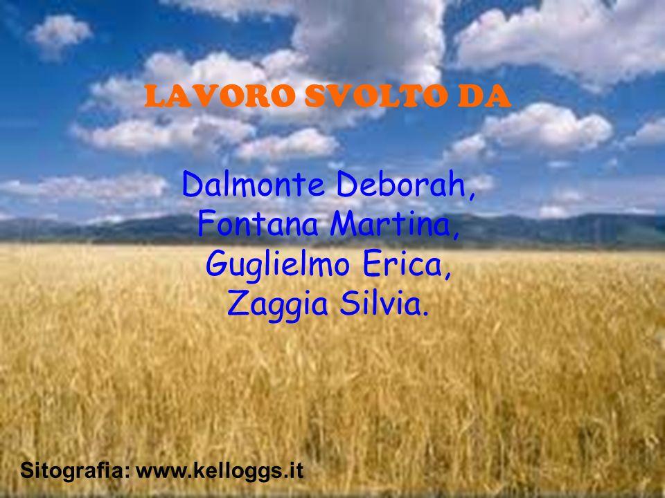 LAVORO SVOLTO DA Dalmonte Deborah, Fontana Martina, Guglielmo Erica, Zaggia Silvia. Sitografia: www.kelloggs.it
