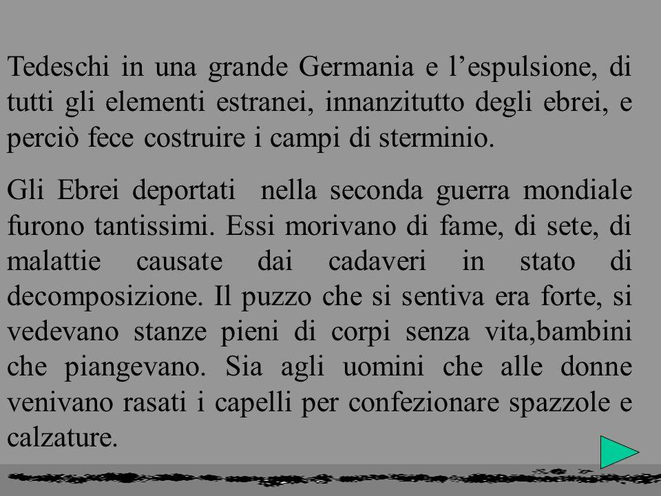 AUSHWITZ:MEMORIA DELLORRORE Questanno si ricorda il lontano 27 gennaio del 1945, giorno in cui le truppe liberatrici abbatterono i cancelli di AUSHWIT