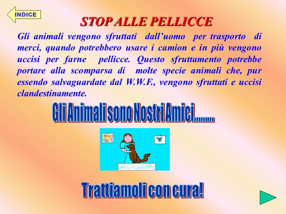 INDICE GLI ANIMALI RISCHIANO LESTINZIONE Prima di premere il grilletto pensa bene a quello che fai!!!
