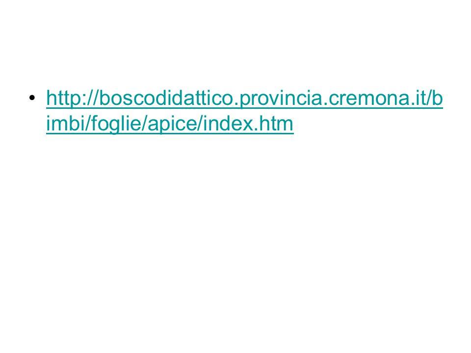 http://boscodidattico.provincia.cremona.it/b imbi/foglie/apice/index.htmhttp://boscodidattico.provincia.cremona.it/b imbi/foglie/apice/index.htm