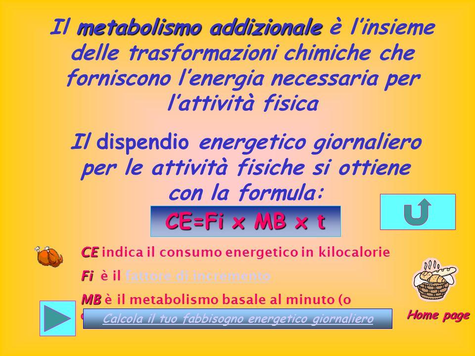 metabolismo addizionale Il metabolismo addizionale è linsieme delle trasformazioni chimiche che forniscono lenergia necessaria per lattività fisica Il
