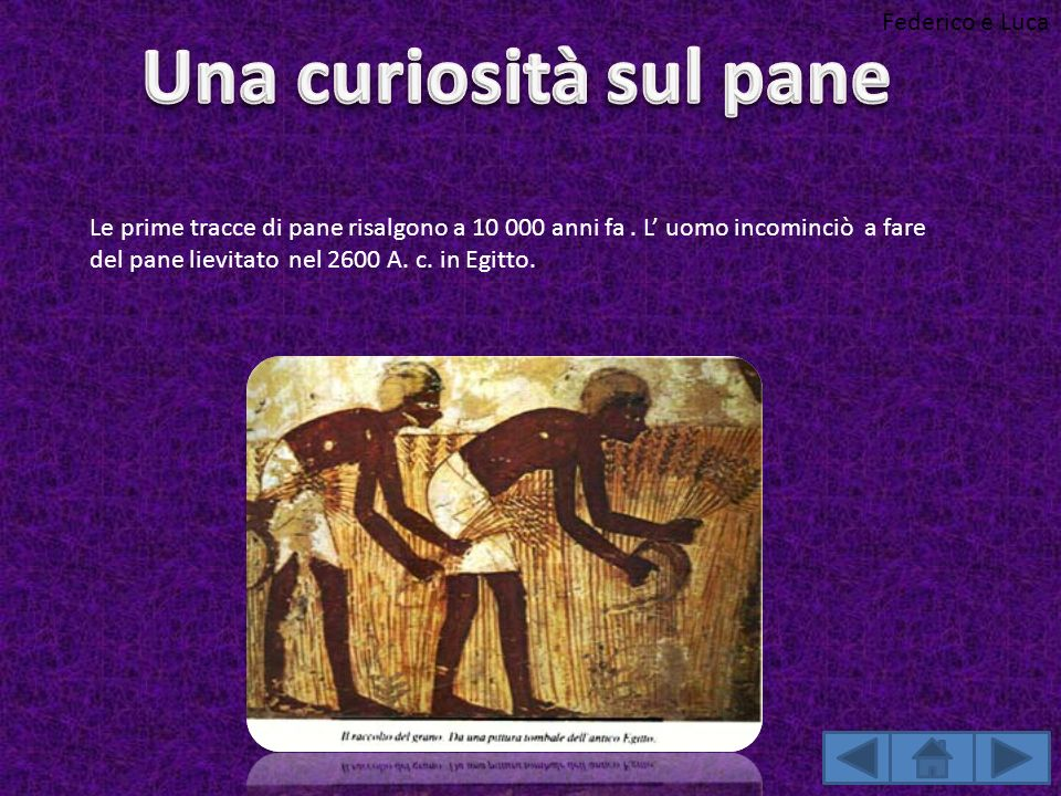 Le prime tracce di pane risalgono a 10 000 anni fa. L uomo incominciò a fare del pane lievitato nel 2600 A. c. in Egitto. Federico e Luca