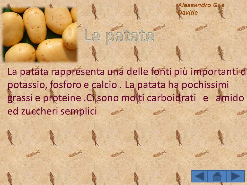 La patata rappresenta una delle fonti più importanti di potassio, fosforo e calcio. La patata ha pochissimi grassi e proteine.Ci sono molti carboidrat