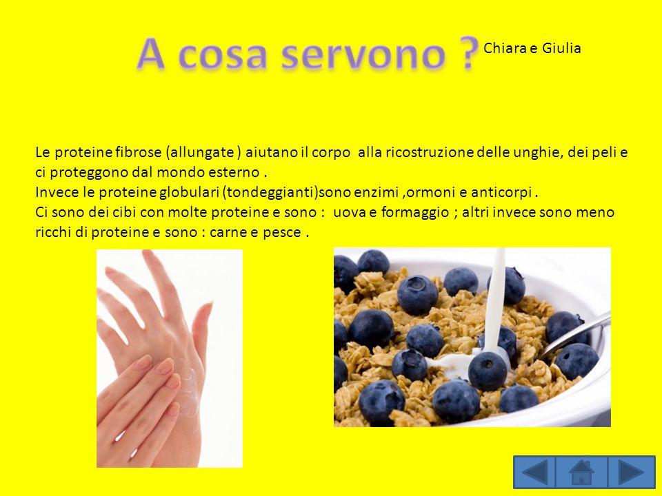 Le proteine fibrose (allungate ) aiutano il corpo alla ricostruzione delle unghie, dei peli e ci proteggono dal mondo esterno. Invece le proteine glob