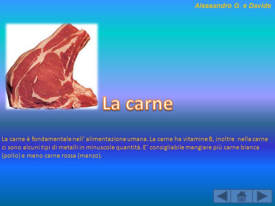 La carne è fondamentale nell alimentazione umana. La carne ha vitamine B, inoltre nella carne ci sono alcuni tipi di metalli in minuscole quantità. E
