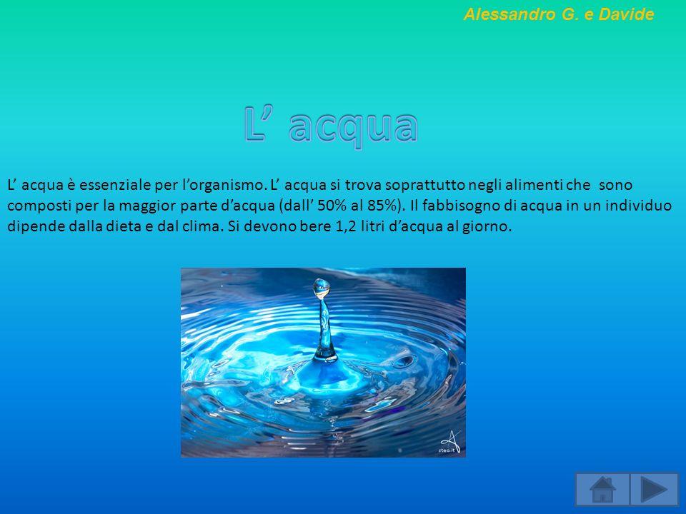 L acqua è essenziale per lorganismo. L acqua si trova soprattutto negli alimenti che sono composti per la maggior parte dacqua (dall 50% al 85%). Il f