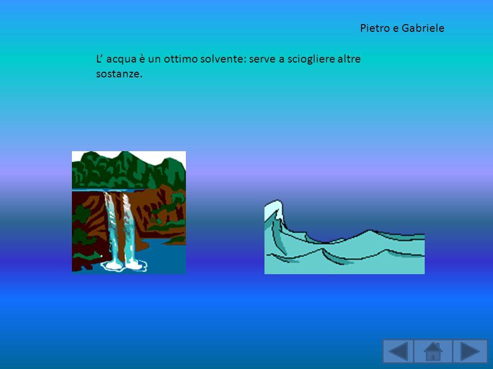 L acqua è un ottimo solvente: serve a sciogliere altre sostanze. Pietro e Gabriele