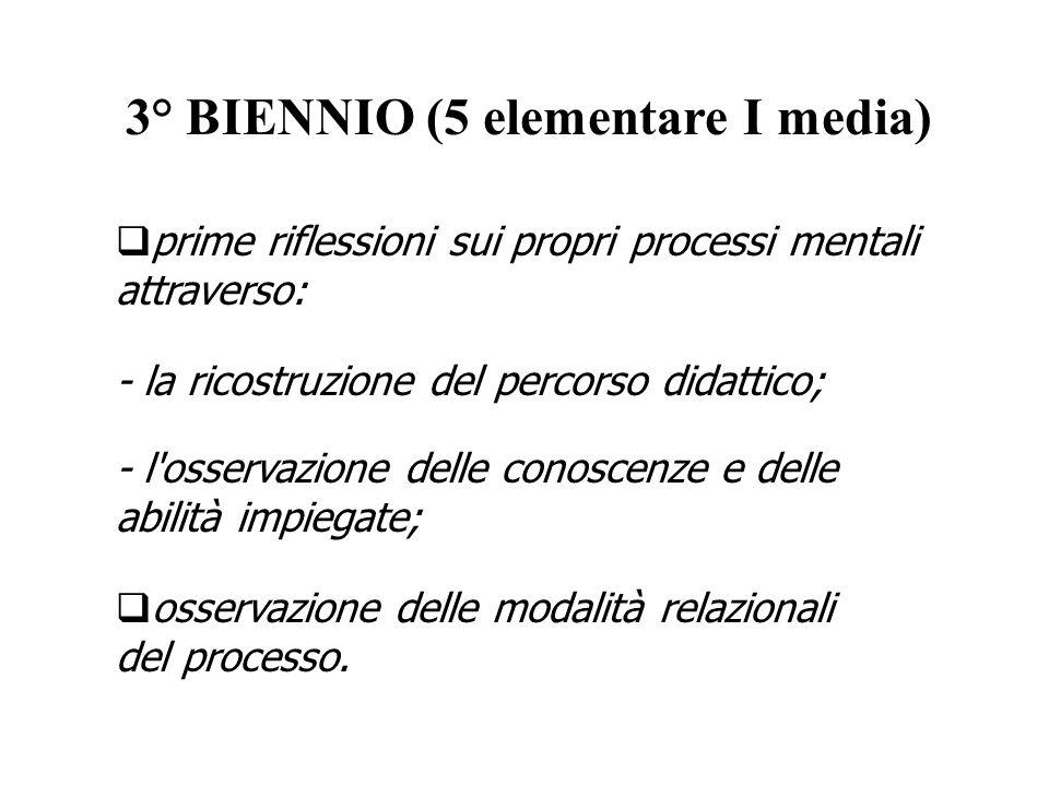 3° BIENNIO (5 elementare I media) - l'osservazione delle conoscenze e delle abilità impiegate; - la ricostruzione del percorso didattico; prime rifles