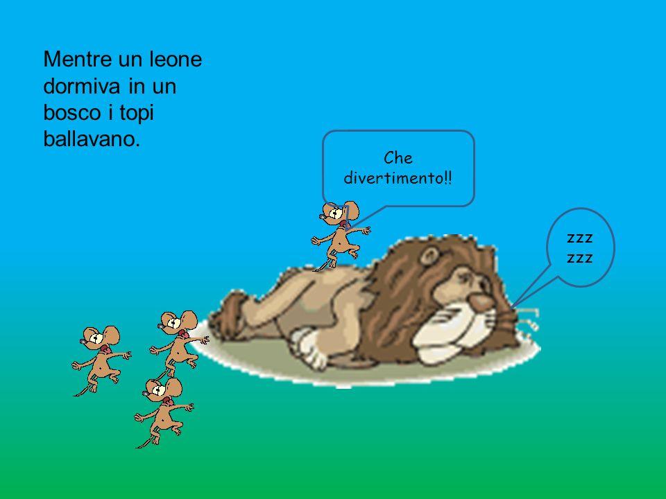 Mentre un leone dormiva in un bosco i topi ballavano. Che divertimento!! zzz