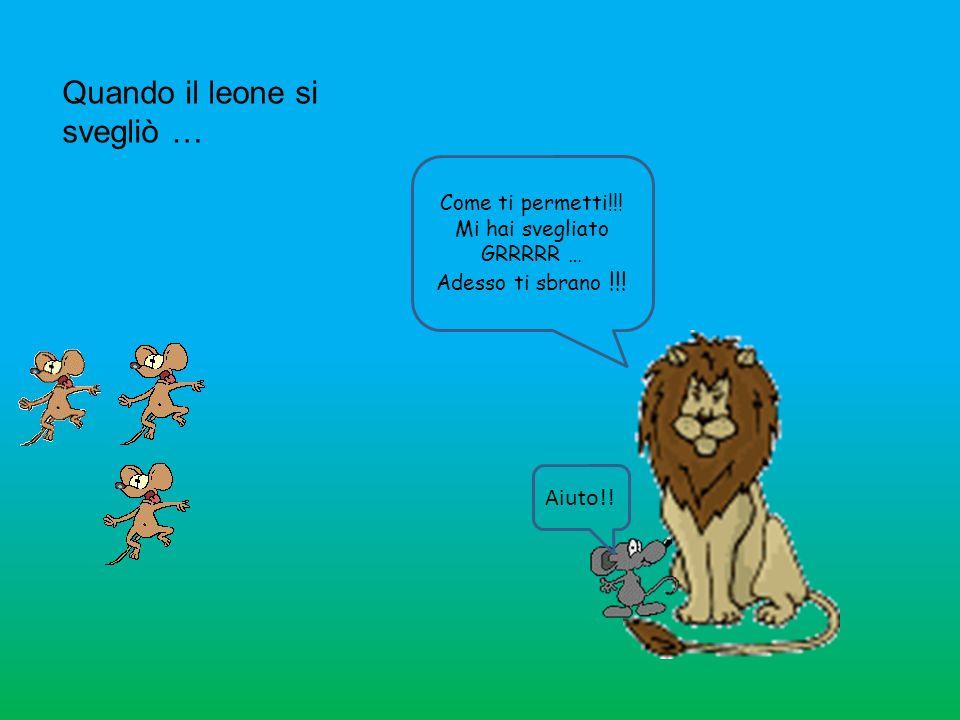 Quando il leone si svegliò … Come ti permetti!!! Mi hai svegliato GRRRRR … Adesso ti sbrano !!! Aiuto!!